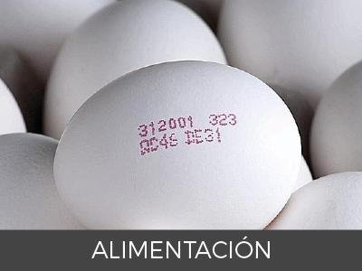 Soluciones de codificación y marcaje: marcaje huevos